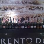 Vini del Trentino, il valore che racchiude l'origine