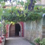 Il Marroneto, vocazione  Brunello