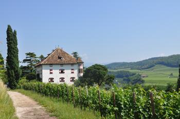 Elena-walch-Castel-Ringberg