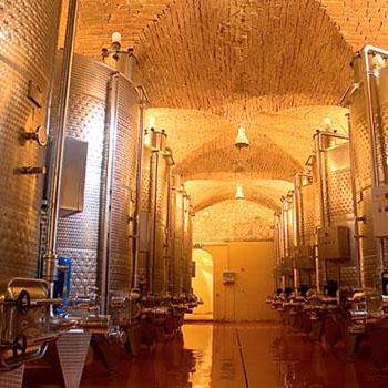Castello-di-Bolgheri-cantina