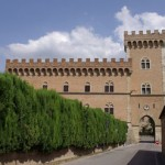 Castello di Bolgheri e terroir l'accordo sublime declinato in eleganza