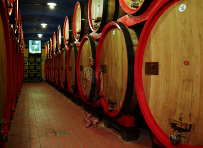bolin_masi_winery