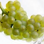 Pinot Bianco d'Europa ospiti ad Appiano