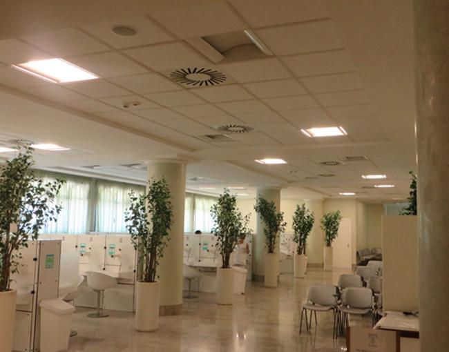 Roseo-Hotel-Euroterme-cure-termali-byluongo 1
