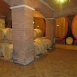 Allegrini Wine, armonia evolutiva