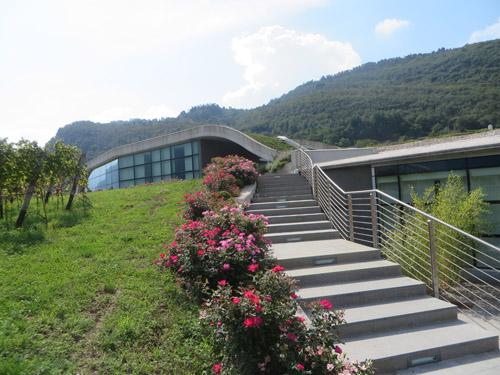 Cantina-Mori-Colli-Zugna-esterno-byluongo