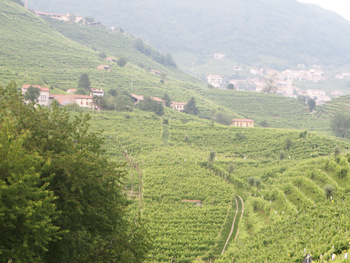Villa-Sandi-Panoramica