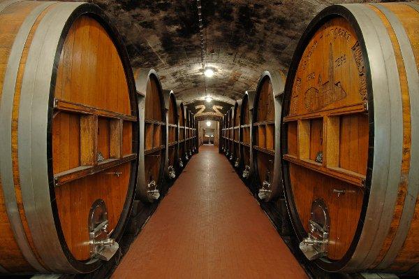 Italien Südtirol Kellerei Terlan Wein Holzfässer im Keller