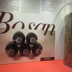 Cesari Wines Verona, moderna tradizione
