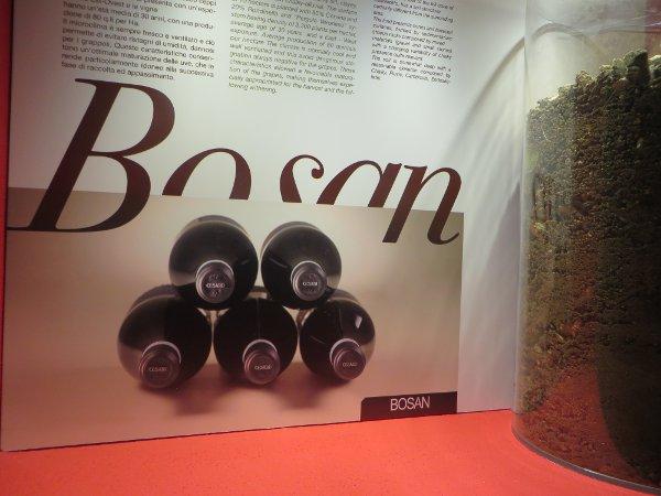 Cesari-Verona-Bosan