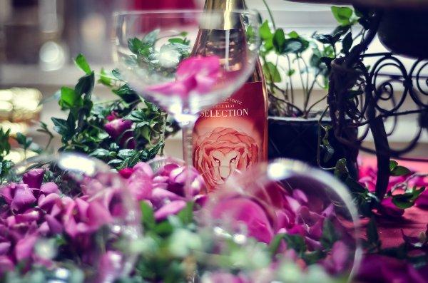 Schloss-Hotel-Korb-dallago-ginger-rose