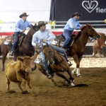 Westernshow and  Fieracavalli