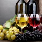 Cultura vitivinicola, s'impara a scuola
