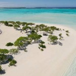 The Brando eco luxury in Polinesia