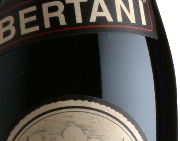 Bertani-Domains