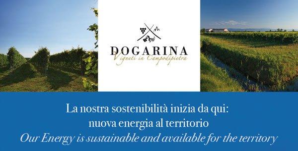 azienda-vitivinicola-Dogarina