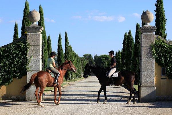 Il-Borro-cavalli