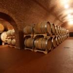Speri Vini. La Valpolicella racconta