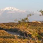 Masi Biologico in Toscana e in Argentina