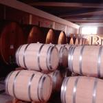 Braida Wine. L'emozione di un vino