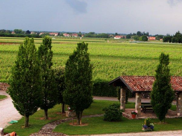 Tenuta-Luisa-Mariano-del-Friuli