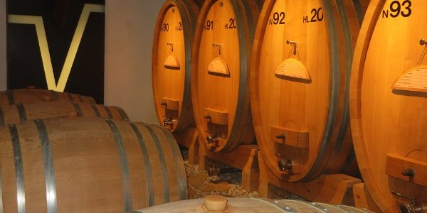 Venica wine. Una porta sul domani
