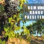 Ocm Vino. Promozione sui mercati dei Paesi Terzi