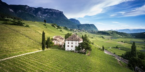 Castel Ringberg wine experience firmata Elena Walch