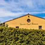 Vitienologia soft per un vino identitario e sostenibile
