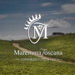 Maremma Toscana Tre Consorzi per la promozione del vino