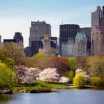 Primavera a New York City. Enjoy in the city