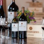 Sognare e acquistare esperienza Wineshop Monteverro