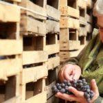 Marinella Camerani ed i suoi vini dalla Valpolicella a Paris