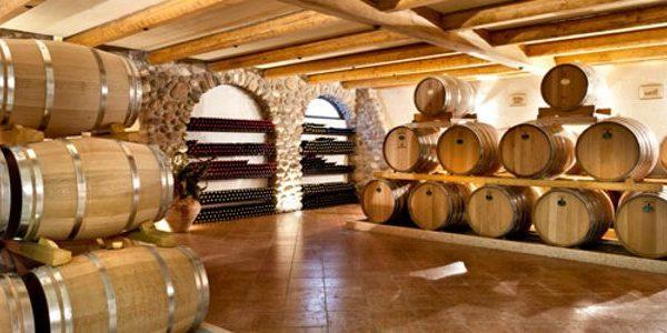 Monte Zovo Vini. Passione, tradizione, intuito per l'innovazione