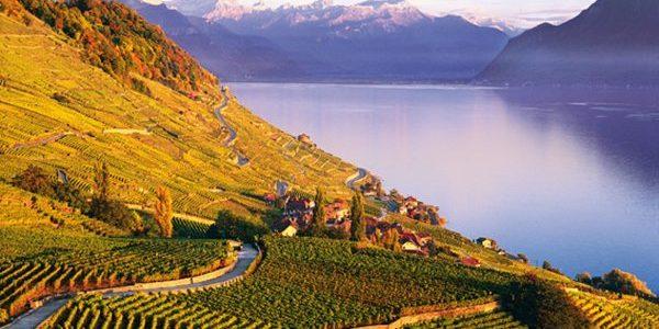 Lavaux, Svizzera. I vigneti terrazzati Unesco, paesaggio di emozioni