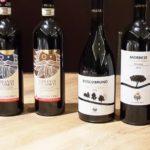 Vallepicciola, dalla Toscana l'equilibrio di vini con un anima