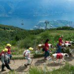 Svizzera, a spasso nella natura per un'estate detox e antistress