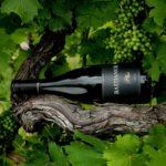 Bastianich Wine. Fedeli all'origine svelano la natura dell'uomo