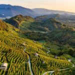 Le colline del Prosecco Patrimonio dell'Umanità Unesco