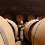 Amarone in Botte Nuovo Lusso per Appassionati, vendite en primeur