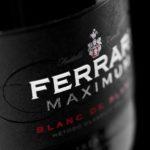 Ferrari Maximum, la nuova immagine presentata a Milano
