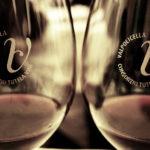 Consorzio Vini Valpolicella approvato bilancio