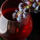 Fermentazione dei vini, fissati i tempi