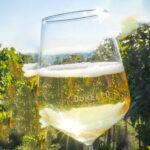 Wine Enthusiast, premia il Lessini Durello