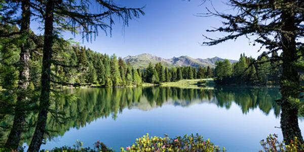 Plose stagione estiva, ospitalità e natura