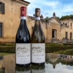Villa Della Torre nuova vita tra arte, pranzi e degustazioni