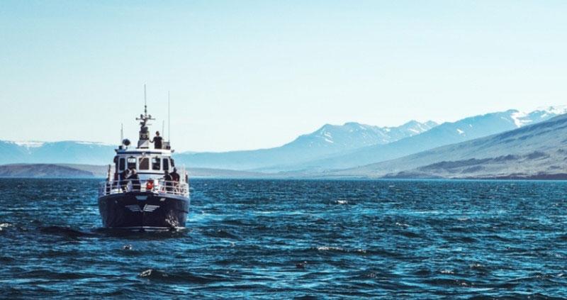 Mare Aperto pesca sostenibile